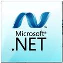 .NET Framework Version 4
